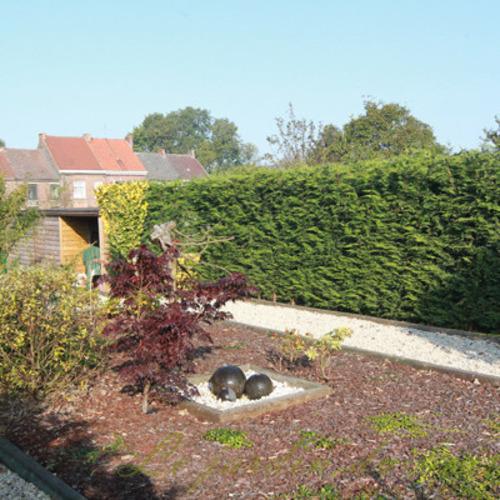 Le Jardin Dubois - Aménagement de jardins